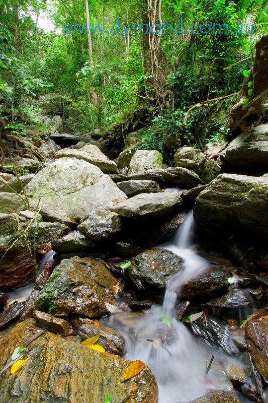 cairns rainforest crystal cascades