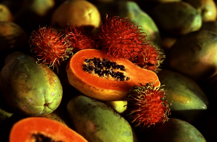 papaya rambutan tropical fruit rustys markets cairns queensland