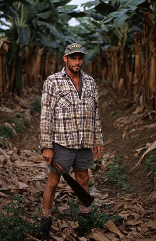 agriculture bananas farming farmer plantation crop