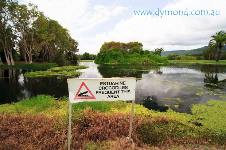 crocodile warning sign golf course far north Queensland