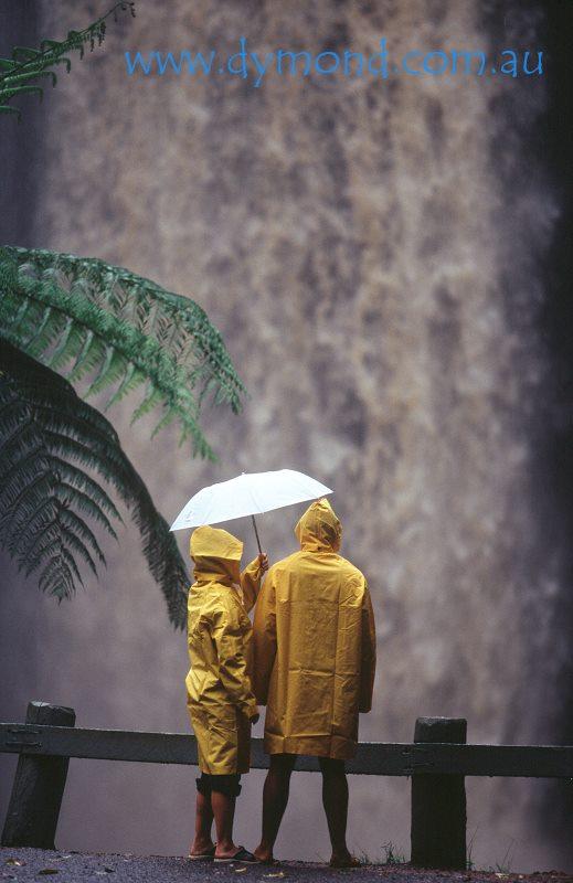 millaa millaa falls atherton tablelands cairns queensland