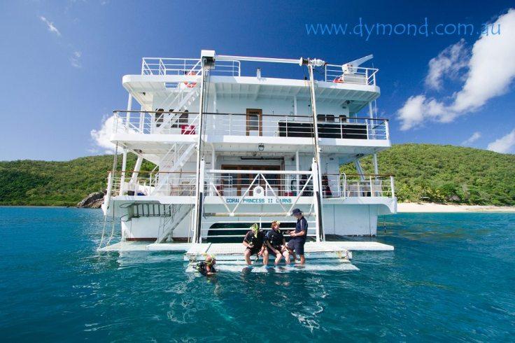 scuba diving pelorus island great barrier reef